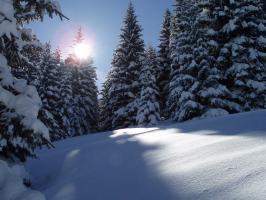 beim Schifahren