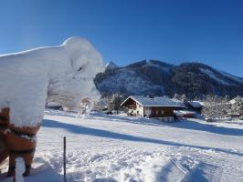 Ice Age vor der Haustüre