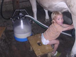 Luis milkt